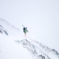 Felix steht stoisch im Schneesturm