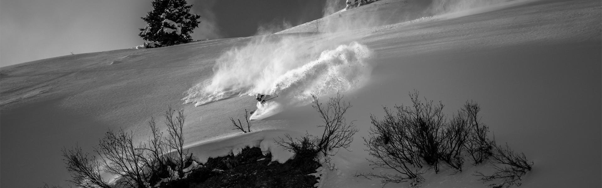 Skilehrer beim Skifahren mit staubenden Pulverschnee und Schneekristalle im Tiefschnee.