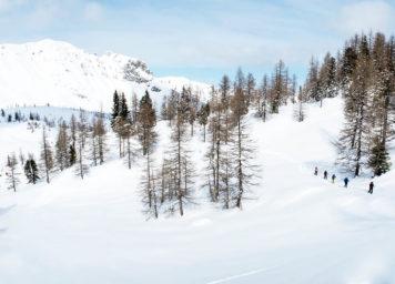 Thumbnail http://Skitourengehergruppe%20im%20Wald