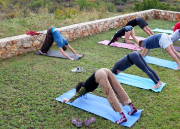 Thumbnail http://Outdoor-Yoga-Session