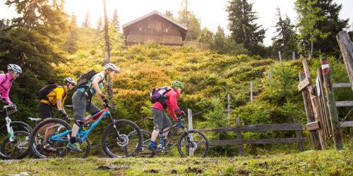 Mountainbike Gruppe fährt durch Weidezaun und Viehgatter