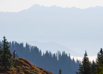 Thumbnail http://Mountainbiker%20in%20den%20Bergen%20mit%20traum%20Aussicht%20und%20rot%20herbstlichen%20Heidelbeerstauden