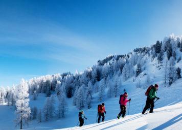 Thumbnail http://Skitourengruppe%20geht%20im%20Neuschnee%20eine%20Skitour%20mit%20mit%20Sonne.