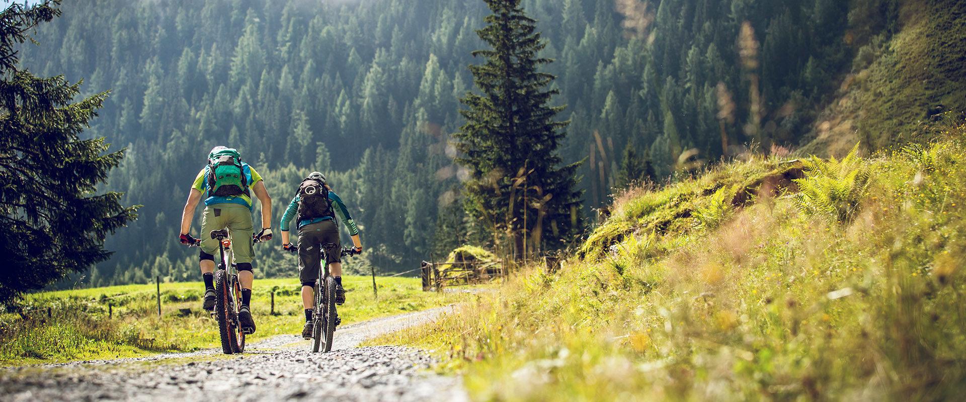 Zwei Mountainbiker fahren über Schotterstrasse in Almengebiet mit Almwiese und grünem Nadelwald im Hintergrund