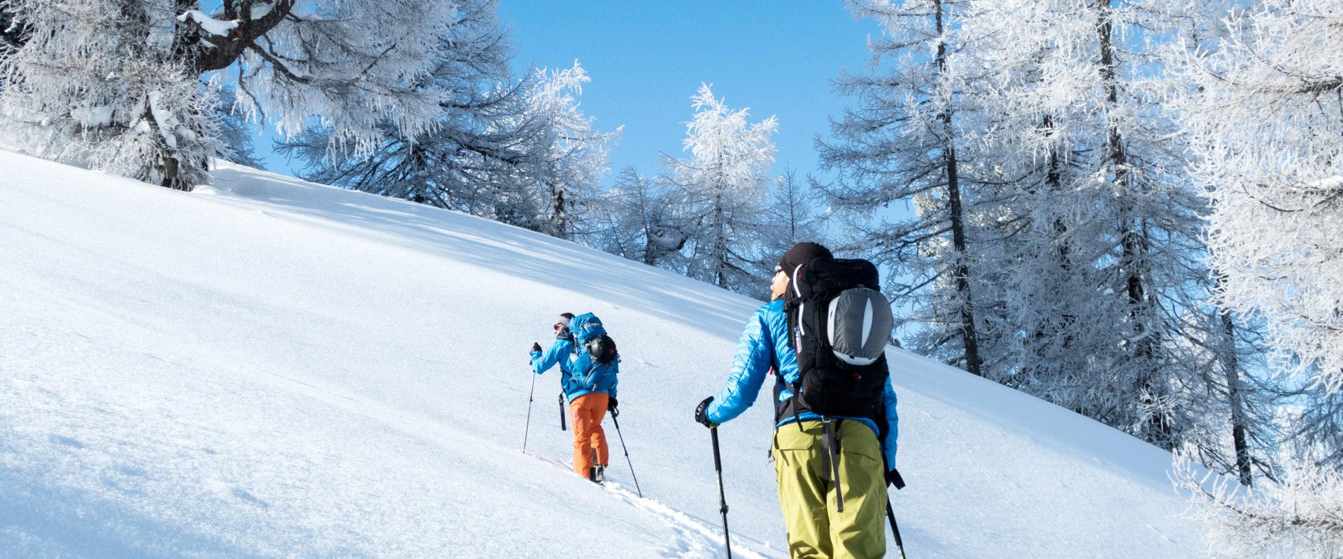 Skitourengeher zieht seine Spur in den frisch geschneiten Pulverschnee im reif bedeckten lichten Hochwald