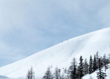 Thumbnail http://Skitourengeher%20und%20Abfahrtsspuren%20im%20Schnee%20mit%20Wedelspur